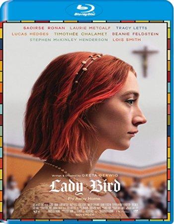 Lady Bird 2017 Dual Audio Hindi ORG 480p BluRay 300MB ESubs