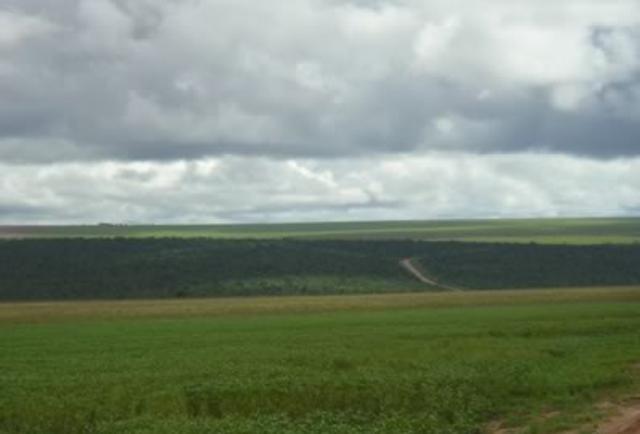 Fazenda em Primavera do Leste - MT