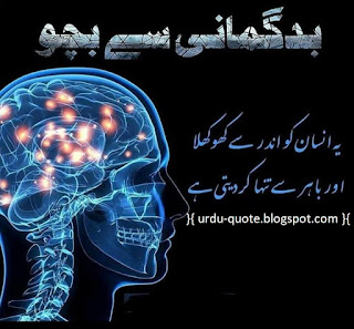 Urdu Lovely Quotes 36