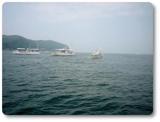 紀淡海峡 船釣り 情景 関西の船釣りで釣れる 竿とリール