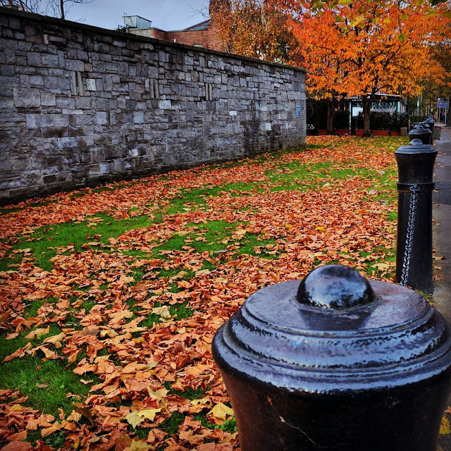 One Day in Dublin City Itinerary: Cannon fence at Beggars Bush