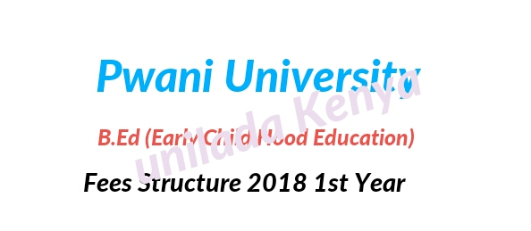 Bachelor of Early childhood education fees structure 2018 Pwani university