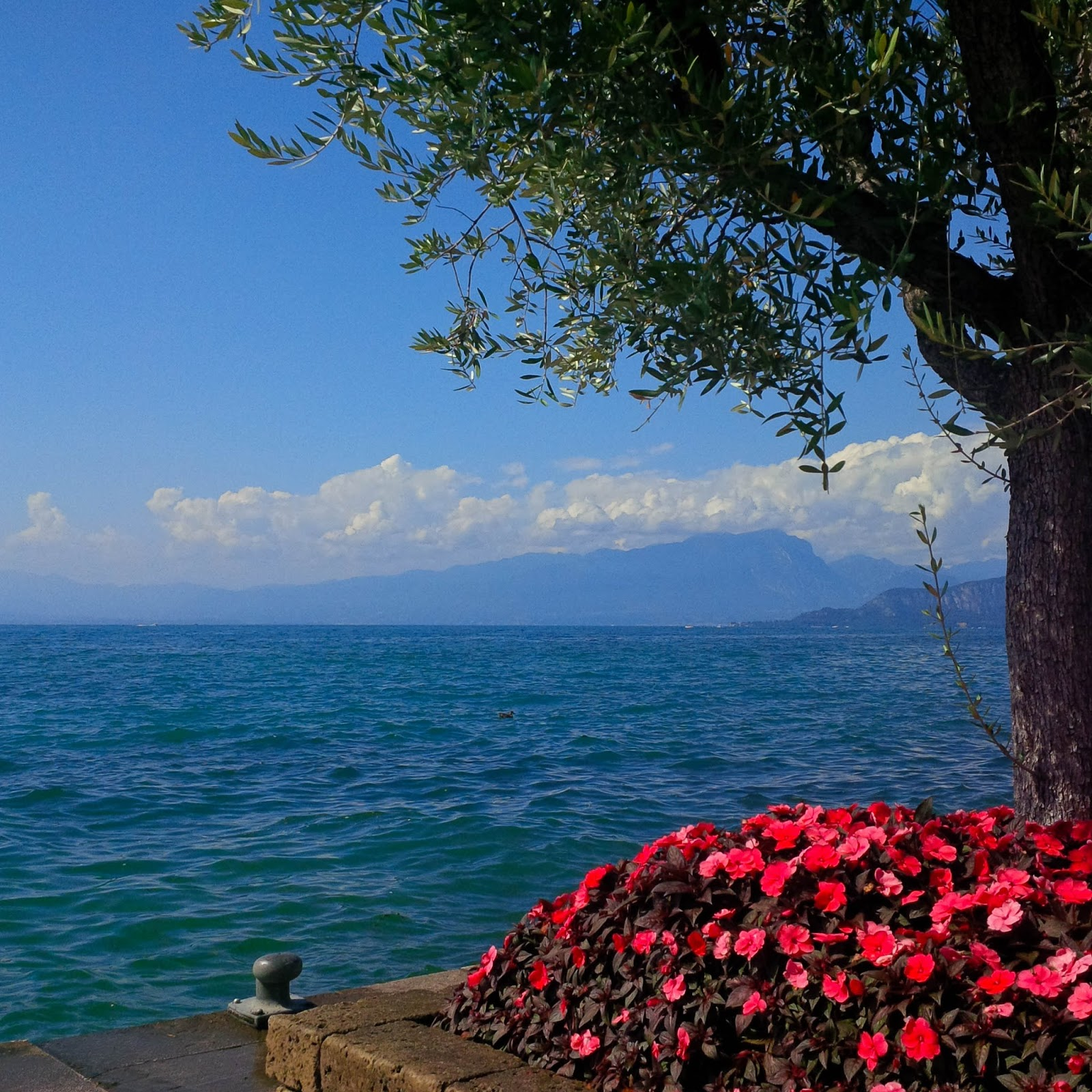 Lake Garda seen from Lazise, Veneto, Italy