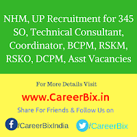 NHM, UP Recruitment for 345 SO, Technical Consultant, Coordinator, BCPM, RSKM, RSKO, DCPM, Asst Vacancies