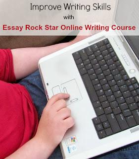 Custom Essay Online