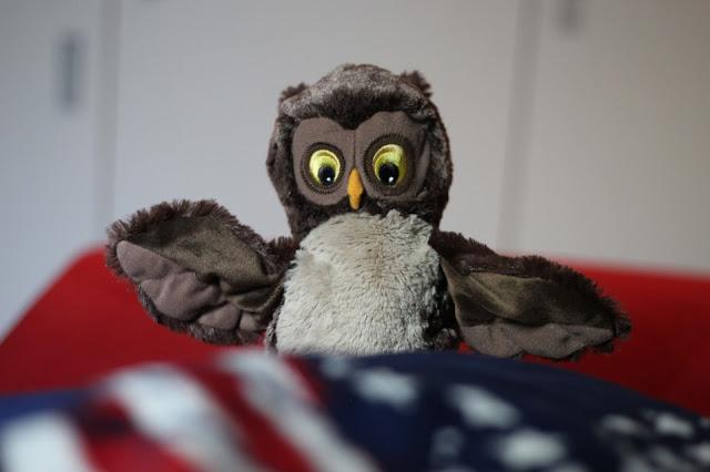 Ikea, Kuscheltier, Eule, Stuffed Animal, Owl, Amerika