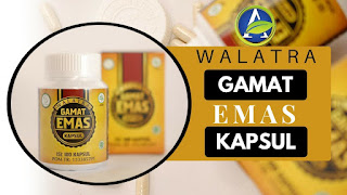 http://obatleukimia.jellygamatluxor.biz/cara-pesan-walatra-jelly-gamat-emas-kapsul/