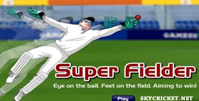 Play Super Fielder cricket match