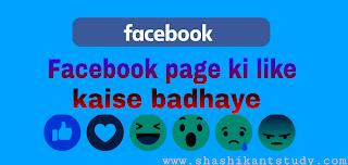 facebook-page-like-kaise-badhaye