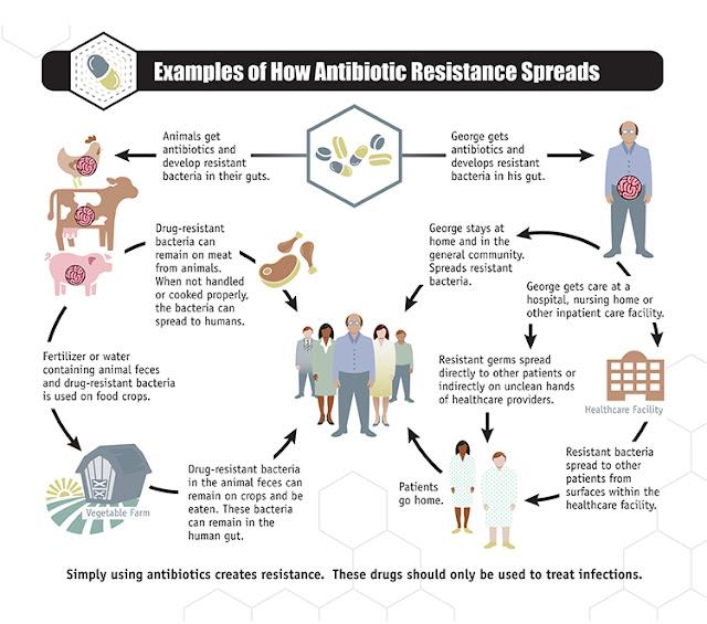 Antibiotic Resistance, Infographic, CDC