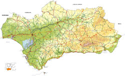 1.104 POETAS ANDALUCES CONTEMPORÁNEOS