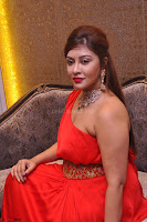 Payal Ghosh Looks Stunning in Red Half Shoulder Gown 007.JPG