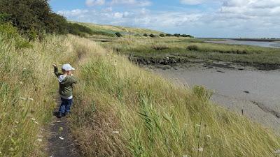 Whoopidooings: Saxon Shore footway