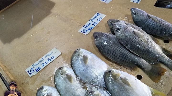 Harga Ikan Jenahak, Bawal Emas dan Siakap