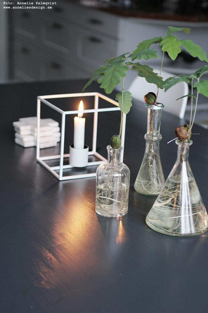 annelies design, webbutik, duo, ljusstake, inredning, inredningsdetaljer, dekoration, prydnad, ljusstakar, ekollon, vas,