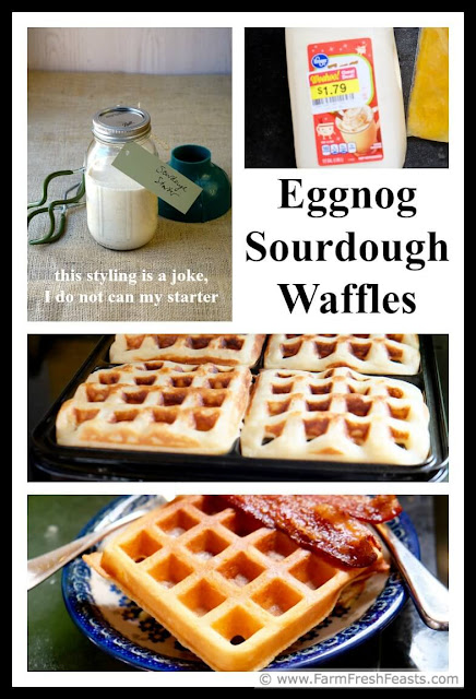 A recipe for tender sweet waffles made with eggnog and sourdough starter. A fun way to enjoy eggnog during the holiday season--and marked down eggnog after the new year!