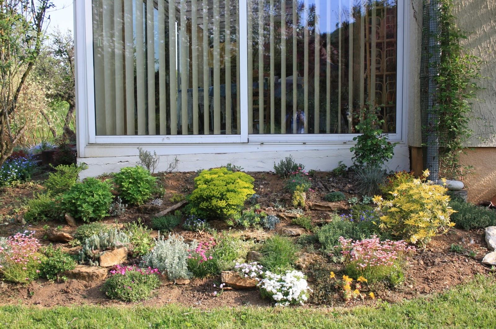 Massif Rocaille Jardin | Plante De Rocaille Scène De Jardin Une ...