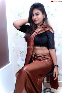 Priya Augustin in saree amazing cute beauty hq .xyz Exclusive Pics 003