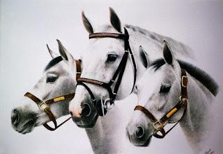 cuadros-cabezas-caballos