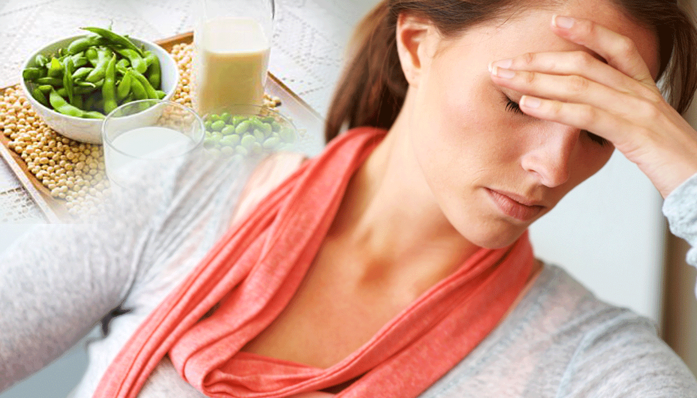 соеви протеини и продукти от соя