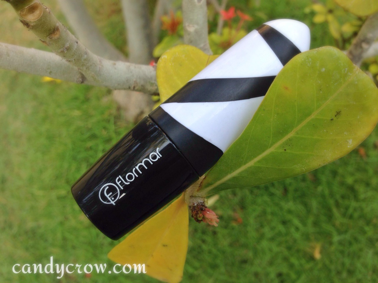 flomar lipstick review R09