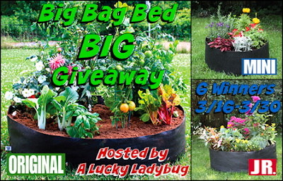 Enter the Big Bag Bed BIG Giveaway. Ends 3/30