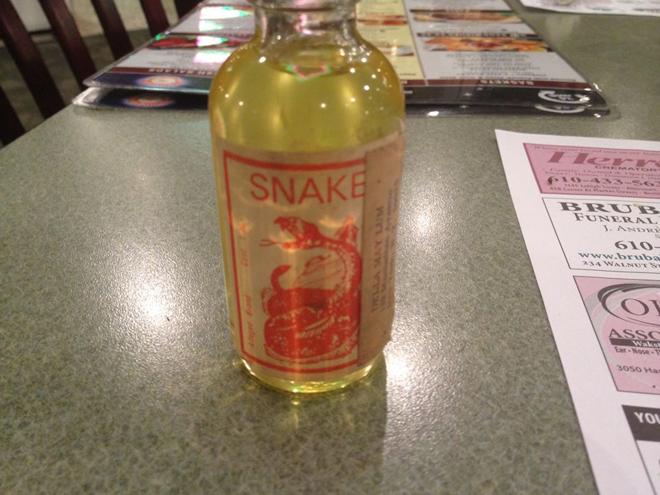 Snake Oil Typical Cats Free Download