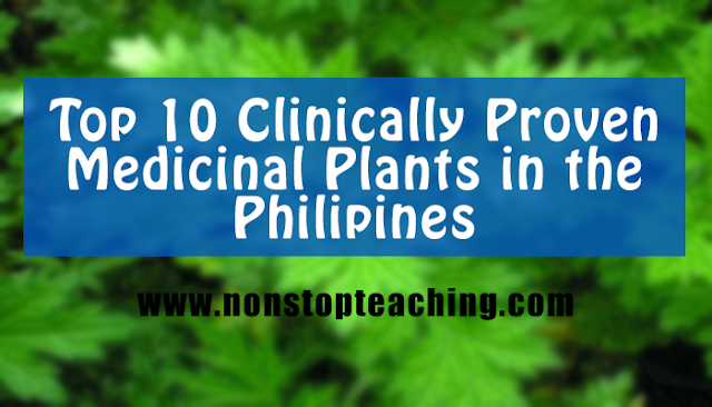 Top 10 Clinically Proven Medicinal Plants in the Philippines