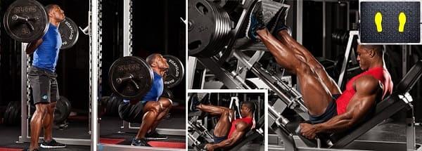 تشريح عضلات الرِّجل . عضلات الرجل . تمارين عضلات الرجل . تقسيم عضلات الرجل . تشريح عضلة الرجل . عضلات الساق الأمامية ..