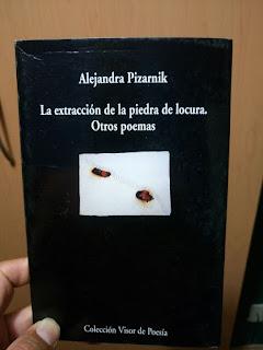 La Extracción De La Piedra De Locura Otros Poemas