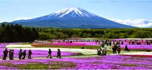 tempat terbaik menikmati keindahan gunung fuji