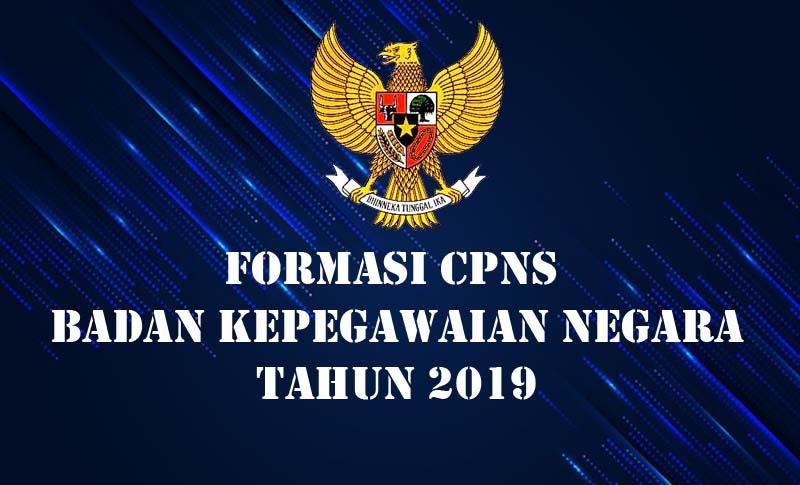 Seleksi CPNS BKN 2019