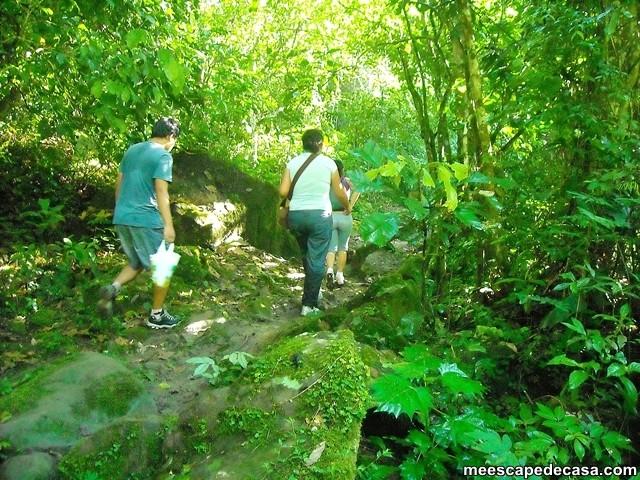 Caminata a través de la selva de la Cordillera Escalera, Perú (Maju, Gina y el Caminante)