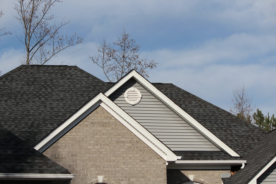 roof line with rain gutters