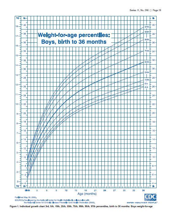 6 Month Boy Weight Chart Homeschoolingforfree