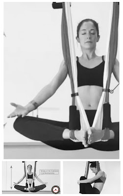 aero-yoga-international-franchise-teacher-training-aerial-pilates-fitness-sport-trending-health-work-shop-professional-studio-diploma-certification-accreditation-USA-canada-australia-europe-online-air-swing-trapeze-hammock-trademark-united-states