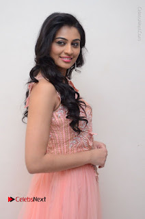 Actress Neha Hinge Stills in Pink Long Dress at Srivalli Teaser Launch  0033.JPG