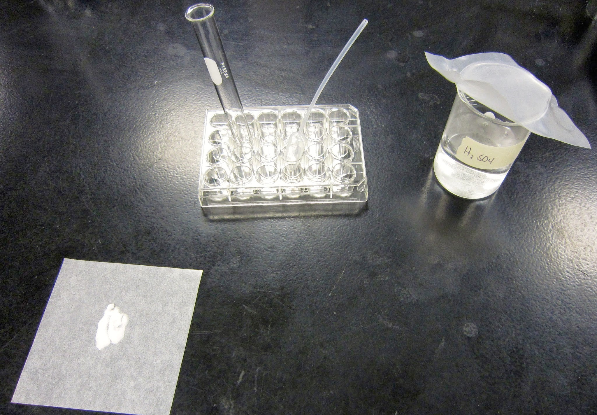 Amy Brown Science Chemistry Lab Percent Composition