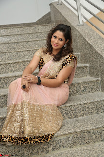 Shilpa Chakravarthy in Lovely Designer Pink Saree with Cat Print Pallu 057.JPG
