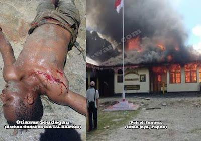 Penasihat Khusus Presiden Minta Kinerja Polda Papua Dievaluasi
