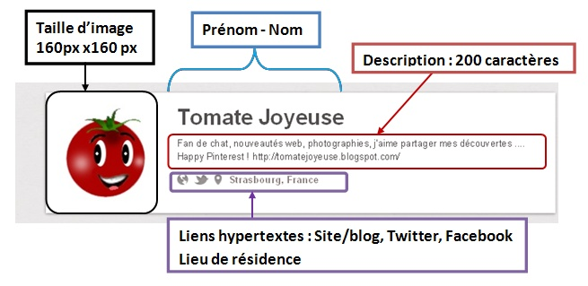 Pinterest, profil, description, lien, image, taille, nombre, carractere