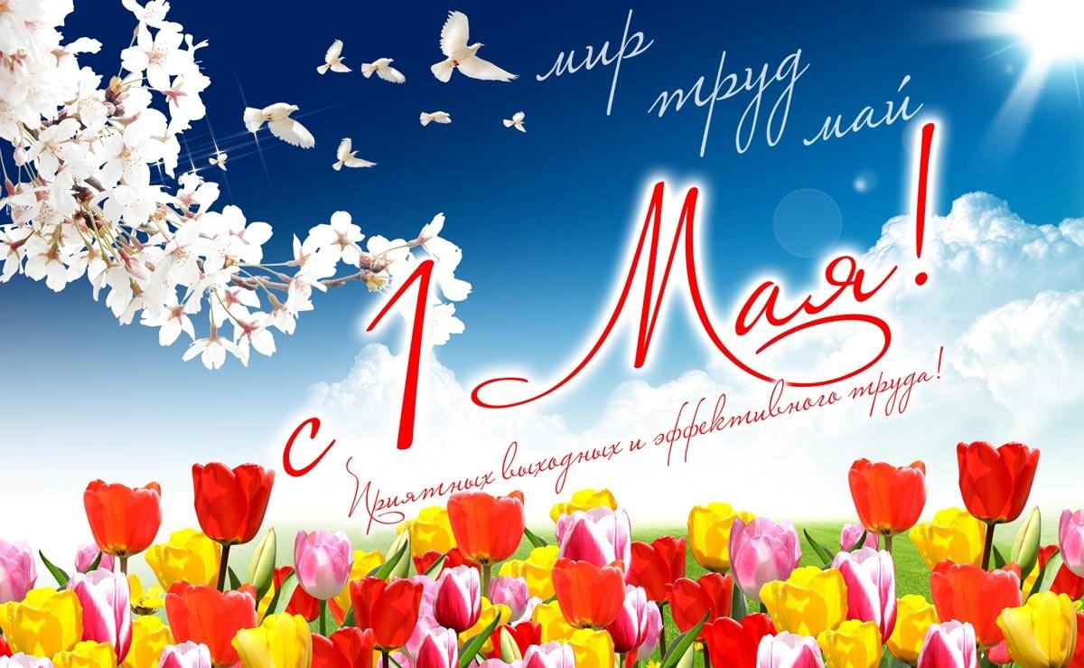 1 мая какой детский праздник ведение детских праздников Берниковская набережная