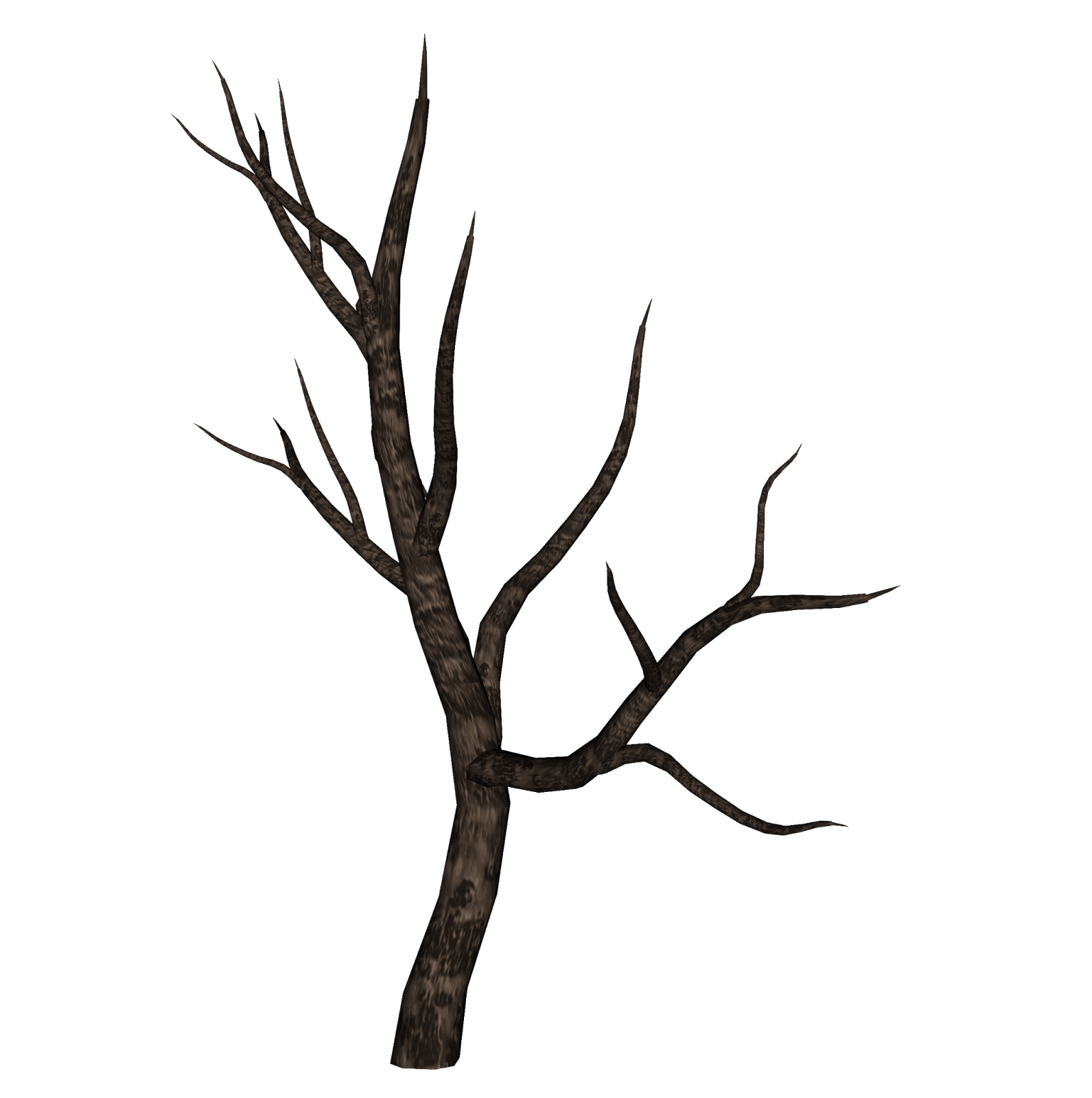 Осенние деревья ветка картинки могут иметь