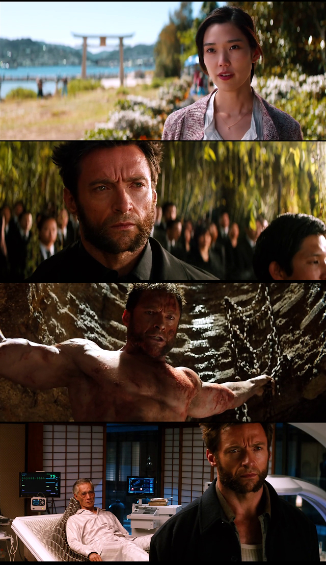 The Wolverine 2013 Dual Audio