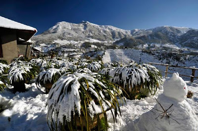 white color domination in Winter in Sapa