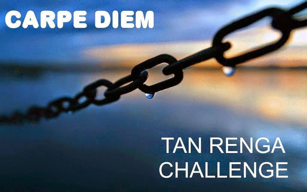 http://chevrefeuillescarpediem.blogspot.in/2014/10/carpe-diem-tan-renga-challenge-55.html