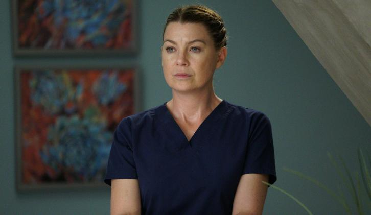 Grey's Anatomy - Episode 14.09 - 1-800-799-7233 - Promos, Promotional Photos & Press Release