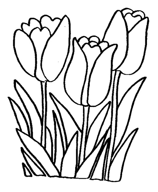 Free Printable Kids Coloring Pages Flowers Flower Coloring Pages Free  Printable Flower Coloring Sheet Lily Flower Coloring Pages Printable