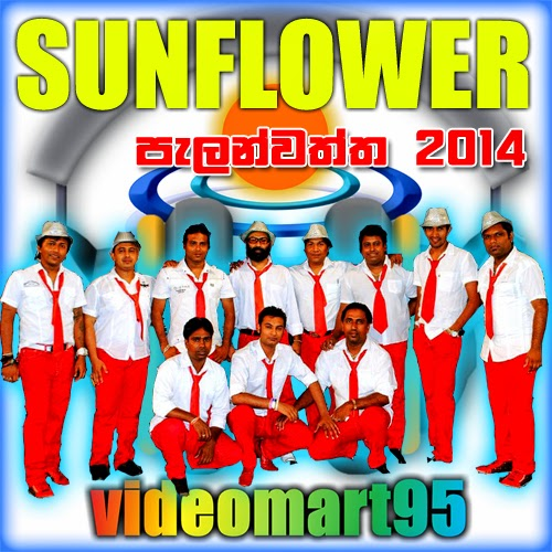 SUNFLOWER LIVE IN PELANWATTA 2014