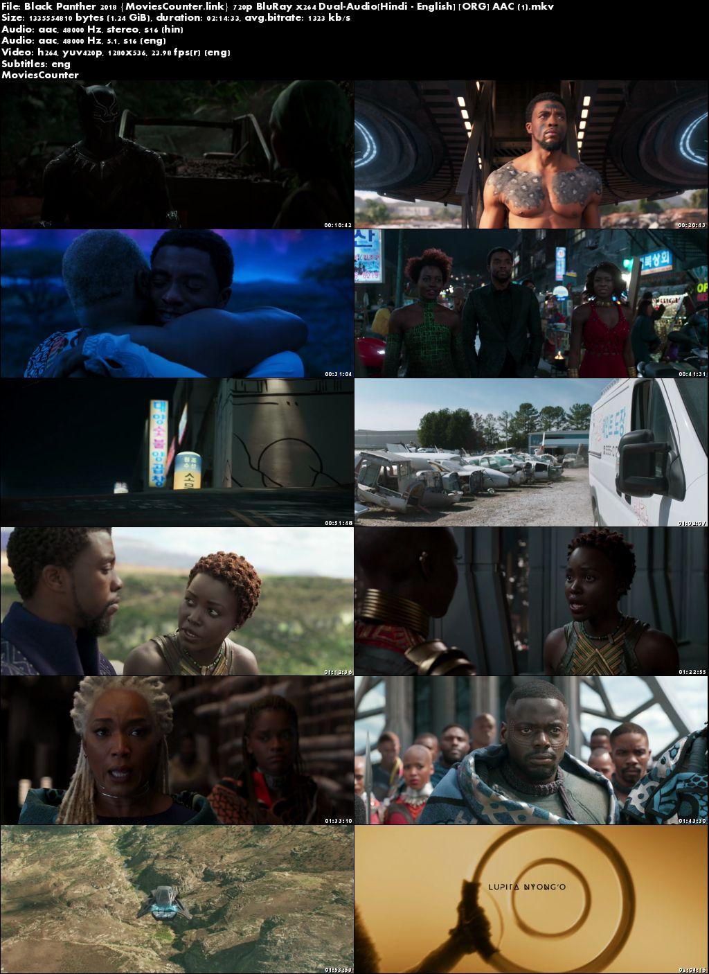 Screen Shots Black Panther 2018 Dual Audio HD 720p